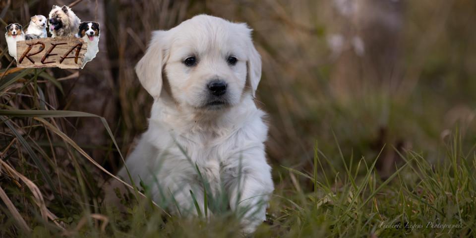 Newton, Nuance et Nuage