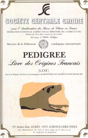 Livre des origines français LOF